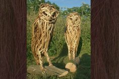 Pair of Owls in Willow with Oak Plinth