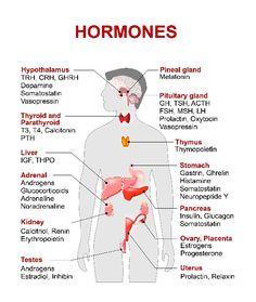 Cortisolo: i sintomi e le cause di un eccesso dell'ormone dello stress