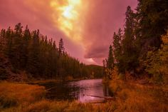 into the woods jasper sunset by markbowenfineart yellow canada landscape sunset fall purple bc jasper nikon miette river into the woods jasper s Canada Landscape, Sunset Landscape, Landscape Photos, Landscape Photography, Travel Photography, Photos Of The Week, Virtual World, Around The Worlds, Country Roads