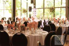 Tribune 1 - Circuit Gilles-Villeneuve in Montreal, QC La toundra wedding hall Circuit, Montreal Qc, Gilles Villeneuve, Color Themes, Wedding Colors, Wedding Photography, Weddings, Table Decorations, Inspiration