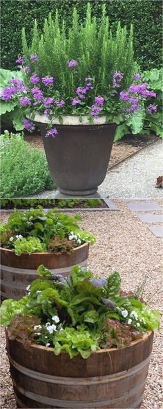 Learn the designer secrets to these beautiful planting recipes. 24 stunning container garden designs with plant list for each and lots of inspirations! - A Piece Of Rainbow http://www.apieceofrainbow.com/container-garden-planting-designs/2/ #ContainerGarden