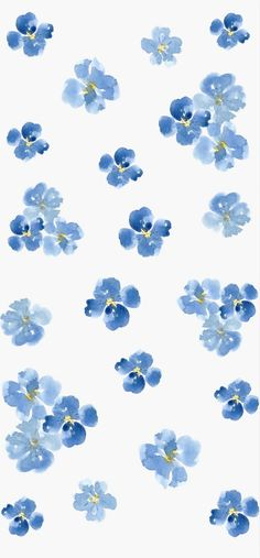 Light Blue // REQUESTED
