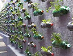 Garden Wall idea