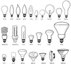| P | All About Light Bulbs