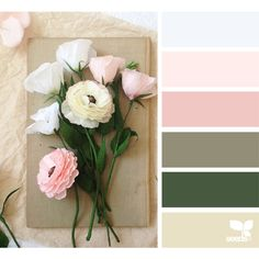 design seeds | search | for all who ♥ color ❤ liked on Polyvore featuring backgrounds, color and design seeds