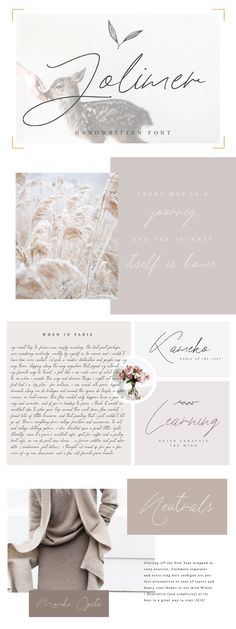 Follow the link to grab this gorgeous mono line script font or pin for later!  This font is especially for you if you need to add tenderness to your project. Combine it with other fonts and add style in your project. This handwritten font is ideal for branding and decorate your any project.This font are perfect for wedding invitation or your blog. Also with their help, you can create a logo or beautiful frame for your home. Or just use for your small business, book covers, stationery…