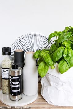 Küchenbilder... #nicolasvahe #menu #brostecopenhagen #uashmama