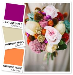 Eggplant, Khaki and Sherbet Orange Color Palette | Sarah Hearts