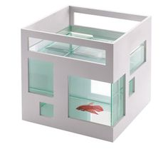 Fishcondo $35 When we get India her fish this will be the tank!