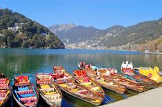 Nainital is the city of lakes. Situated in the lap of Nainital, it's a favorite spot for honeymoon. So many tourists come here to relish Top Honeymoon Destinations, Honeymoon Spots, Nainital, Tourist Places, Tourist Spots, Famous Places, Incredible India, Cool Places To Visit, Tourism