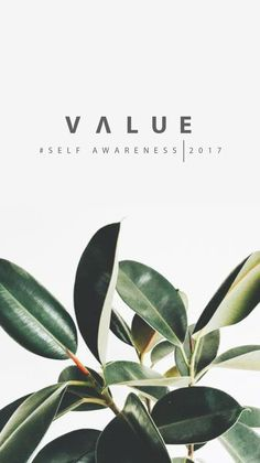 """""""To have more, one simply needs to become more. """"- Jim Rohn - 