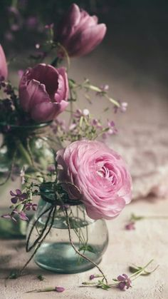 Exotic Flowers, Cut Flowers, Silk Flowers, Beautiful Flower Arrangements, Floral Arrangements, Beautiful Flowers, Beautiful Things, Flower Vases, Flower Art