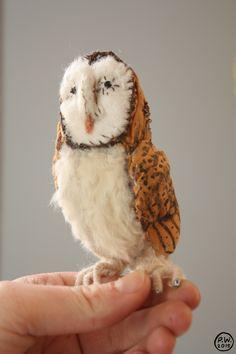 Barn Owl. Phoebe Wahl 2015.