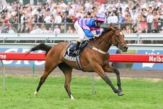 Serenade Rose(2002)Stravinsky- Rose Of Tralee By Sadler's Wells. 3x3 To Northern Dancer, 3x4 To Special, 5x5x5 To Native Dancer. 19 Starts 8 Wins 3 Seconds 2 Thirds. $1,773,635. Won VRC Oaks(Aus-1), AJC Oaks(G1). Champion 3 YO Filly In Australia.