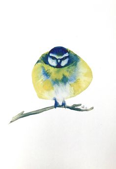 Items similar to watercolor bluetit bird painting / illustration print. Christmas Gift Poster on Etsy Unique Paintings, Dark Matter, Poster On, Watercolor Tattoo, Christmas Gifts, Birds, Unique Jewelry, Handmade Gifts, Art Prints