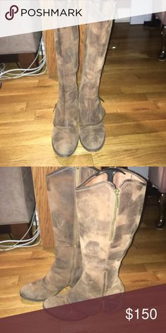 Donald J. Pliner Tall riding boots Brown leather boots with 1.5 inch heel, styled with zippers. In good condition. Shoes