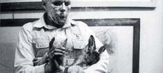 Showdown: Rabbits vs. Hares, (aka, Happy Anniversary Mr. Beuys) by Tania O'Donnell from proximityarts.org