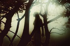 Pagan Beauty - Black Forest