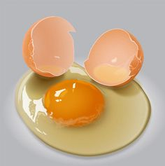 How to Draw a Egg Yolk Using Adobe Illustrator