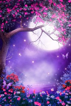 Fantasy Fairy Flowers Trees Gothic Photography Backdrops Purple Scenery Moonlit Night Photo Backgrounds for Children Studio Props Beautiful Nature Wallpaper, Beautiful Moon, Beautiful Landscapes, Fantasy Background, Art Background, Night Background, Background For Photography, Photography Backdrops, Gothic Photography