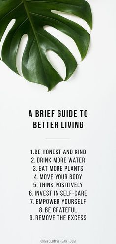 A Brief Guide To Better Living