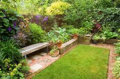 KATHY TAYLORS GARDEN, LONDON: A PLACE TO SIT: BACK GARDEN WITH LAWN AND WOODEN BENCH/ SEAT