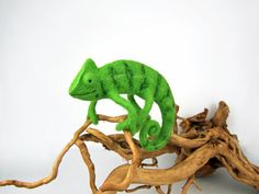 Needle felted OOAK Chameleon, needle felted felt sculpture, soft sculpture, reptile. Green, light green. TaFiOLand      #etsyresolutionDE‬ ‪Chamäleon‬ ‪gefilzt‬ ‪chameleon‬ ‪‎needlefelted‬ ‪needlefelt‬