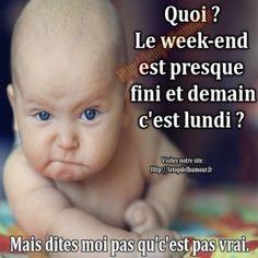Le week-end est presque fini.........3