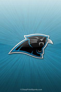 Carolina Panthers Football Fever, Panthers Football, Football Team, Football Stuff, Carolina Football, Nfl Carolina Panthers, Carolina Gamecocks, Panther Nation