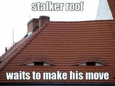 Stalker Roof! Yikes!