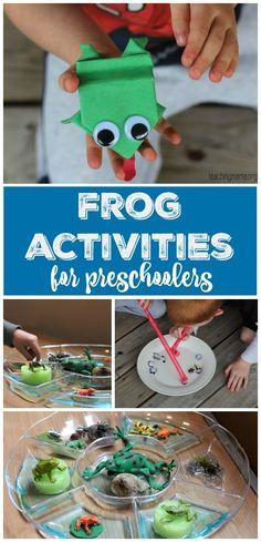 amphibians activities Frog Activities for Preschoolers - lots of great hands-on learning ideas all about frogs! Preschool Lesson Plans, Preschool Themes, Kindergarten Activities, Preschool Science, Preschool Crafts, Frog Activities, Fun Activities For Kids, Reptiles Preschool, Frog Theme
