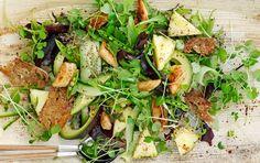 Kyllingesalat med avokado - fit living - ALT.dk