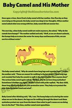 This is an amazing animal moral story for kids. Full story in link above, read now. Short Moral Stories, English Short Stories, Moral Stories For Kids, Baby Camel, Sketches, Thoughts, Reading, Link, Funny