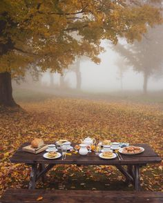 Foggy morning breakfast at our little cottage in the woods #Vermont #gmgtravels #fallcolors #foggymorning #breakfast #newengland #fallroadtrip