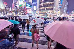 Crossing Shibuya Scramble tonight in the rain - behind someone with a Hello Kitty umbrella. (黒ネコ)
