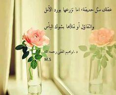 د/ إبراهيم الفقى