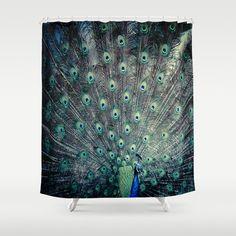 Peacock Shower curtain blue green feathers by DreameryPhoto, $60.00