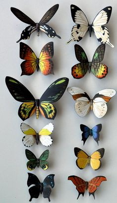 Butterfly Moth Magnets Wholesale Lot of 12 insects Refrigerator Magnets. $15.00, via Etsy.