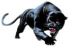 """Résultat de recherche d'images pour """"panthere noire"""""""