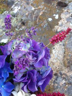Plockat lite blommor från trädgården.
