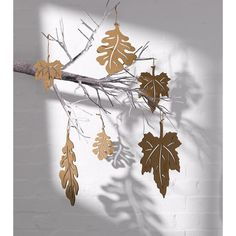 CORRUGATED MAPLE LEAVES | DZD