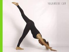 variante-della-posizione-della-cane-a-testa-in-giù http://www.yoganride.com/5-posizioni-yoga-per-allungare-il-bicipite-femorale/