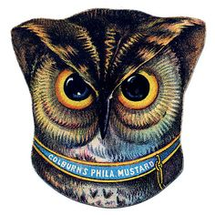 Vintage Graphic - Fabulous Owl Head - The Graphics Fairy