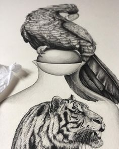 Sneaky peak - exhibition opening June 22nd.Keep your 👀 pealed for more information.-#exhibition #newcastleexhibition #greatexhibitionofthenorth #northumbriauni #gallerynorth #tigerdrawing #pencildrawing #fineart #greypalmcockatoo #messageinabottle
