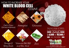 Produced in the bone marrow, white blood cells (WBCs) are the disease-fighting agents of your immune system. A healthy body has an abundance of WBCs that travel to the affected organs White Blood Cells Increase, Low White Blood Cells, White Blood Cell Count, Red Blood Cells, Top 10 Home Remedies, Natural Remedies, Bone Marrow, Healing Herbs, Natural Healing
