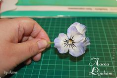 Мастер-класс Лепка Мастер класс Лепим цветок Анютки часть 1 Фарфор холодный