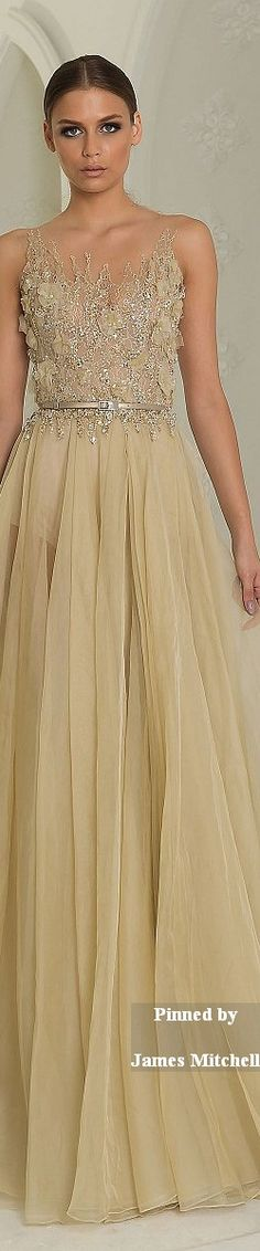 Abed Mahfouz Couture Collection  Fall-winter 2014-2015