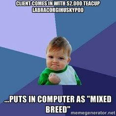 vet-tech humor. Bwahhahahahaha