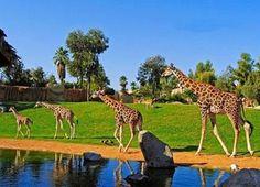 خاصترین باغ وحش دنیا