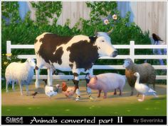 Sims by Severinka: Animals converted part II • Sims 4 Downloads